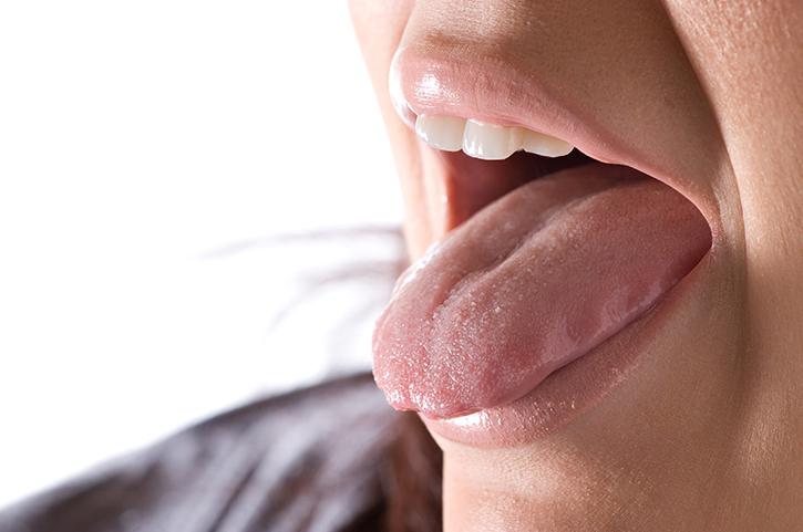 Glándulas salivales: Partes y Funciones